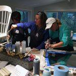 Chalk Paint Workshop Classes
