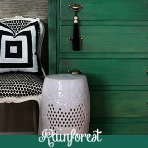 Rainforest Chalk Paint